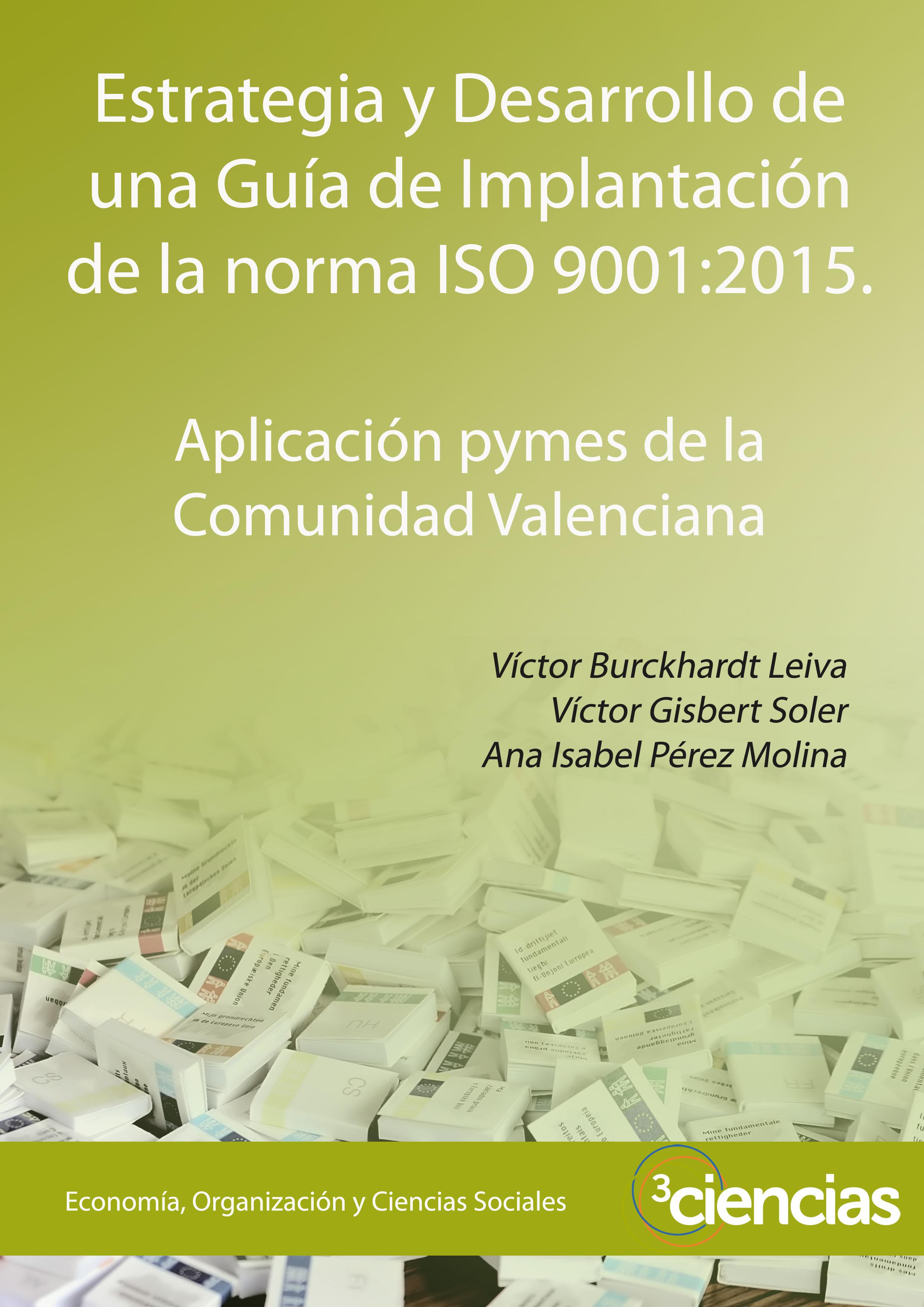 Estrategia y desarrollo de una guía de implantación de la norma ISO ...